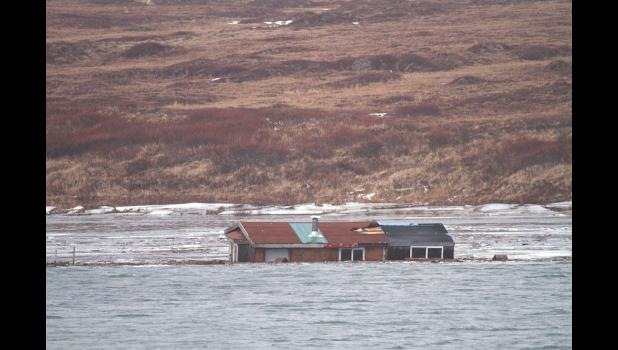 CABIN ADRIFT – Rita Hukill's cabin drifts in the Nome River after it was swept off the sandspit at Fort Davis.