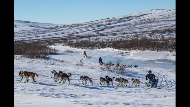 The Nome Kennel Club held a two-day, 92-mile race last weekend. Five mushers participated.