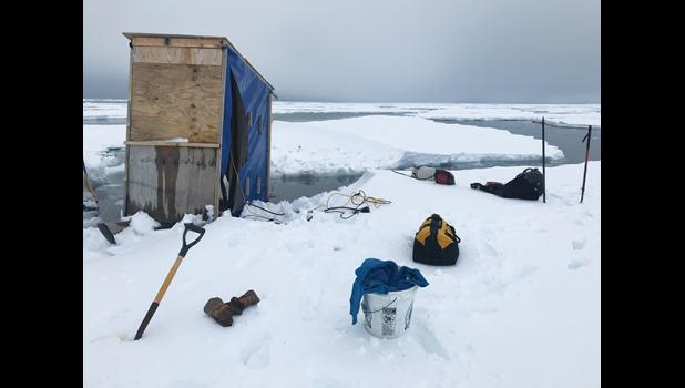 EARLY— Unseasonally early sea ice breakup caused a hectic effort to salvage mining equipment from mining operations in front of Nome
